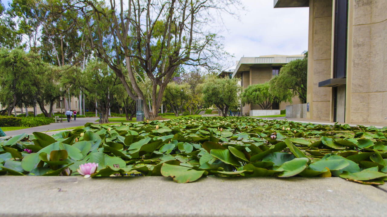 How to take care of yourself at Caltech